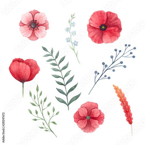 fototapeta na ścianę Flowers set 7
