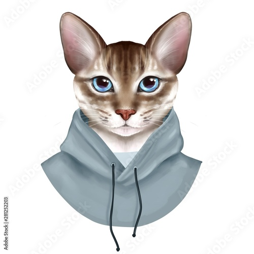 dressed-up-cat-cute-digital-illustration-isolated-on-white