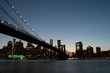brooklyn bridge and lower manhattan skyline at night