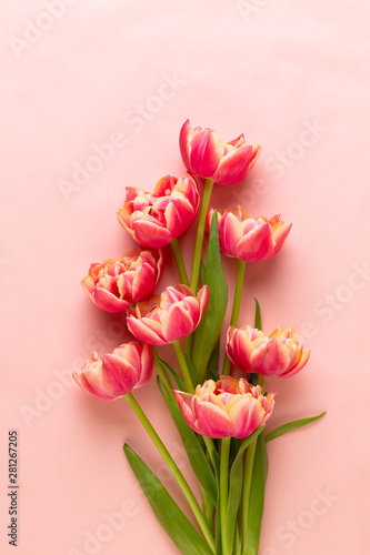 Spring flowers tulips on pa...