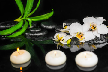 Obraz na Szkle Storczyki spa still life of white orchid (phalaenopsis), candles, green leaves and black zen stones with drops on water with reflection