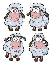 Sheep Cartoon Icons