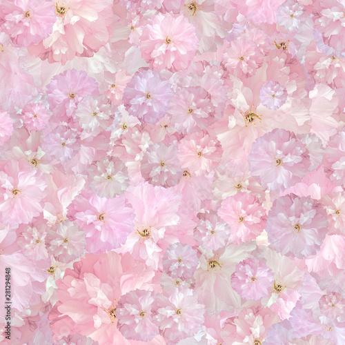 Frisches Hintergrund-Blumen...