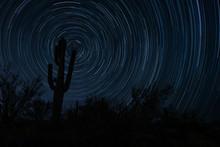 Saguaro Star Trails Circumpolar