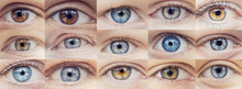 Set Collage Of People Eyes Are...