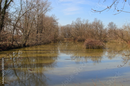 Winter landscape with stagnant water Fototapet