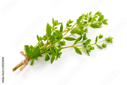 Obraz Fresh sweet marjoram herb, oregano, isolated on white background - fototapety do salonu