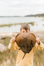Boy Holding A Horseshoe Crab In Front Of His Face