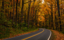 Winding Autumn Path In The Smoky Mountains