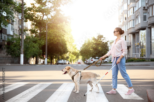 Tablou Canvas Young blind woman with guide dog crossing road