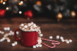 canvas print picture - Winter whipped cream hot coffee in a red mug with star shaped cookies and warm scarf - rural still life
