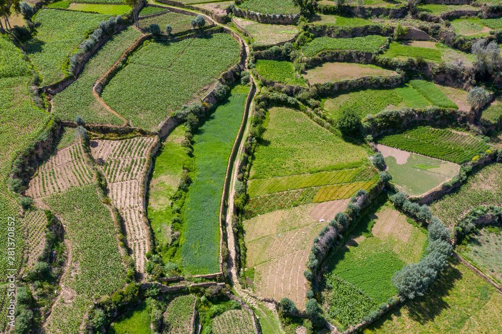 Fototapeta Andenes or platforms for agriculture in Peru