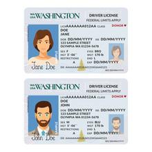 Vector Template Of Sample Driver License Plastic Card For USA Washington