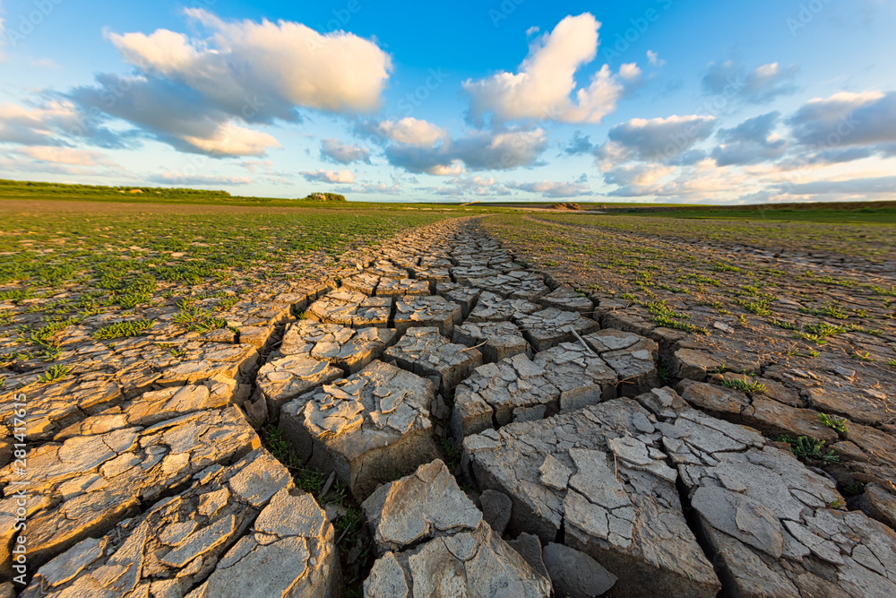 Fototapeta Arid and dry cracked land due to climate change and global warming - An ecological disaster