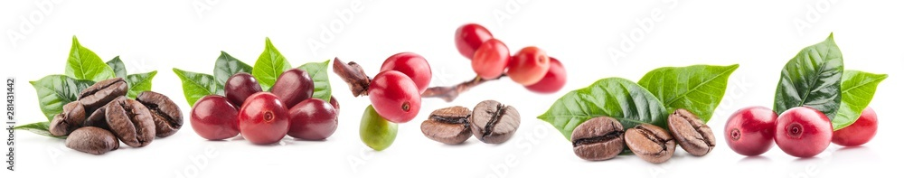Fototapeta Collection of Red coffee beans isolated on white background