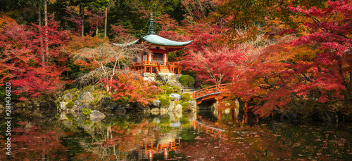 Wall Murals Kyoto Daigoji temple and autumn maple trees in momiji season, Kyoto, Japan