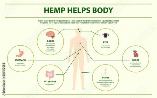 Hemp Helps Body horizontal infographic illustration about