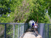 Family On A Wooden Bike Trail Across The River In Quebec
