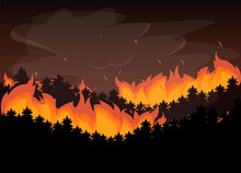 Wild Fire In The Forest. Natural Disaster, Red Flame