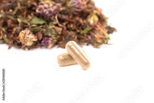 Photo  Dried Red Clover Flowers and Leaves on a White Background