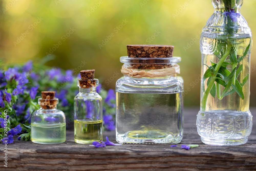 Fototapety, obrazy: Bottles of essential oil with fresh blooming hyssop