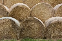 Stack Of Hay Bales In Field