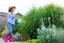 Little Girl Watering Plant Outdoors. Home Gardening