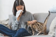 Diseases From Pets Concept. Wo...