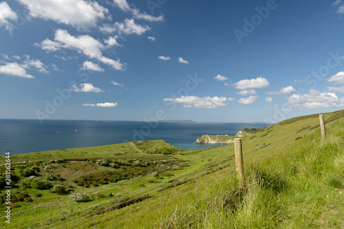 obraz lub plakat View from footpath near Mupe Bay near Lulworth Cove on the Dorset coast