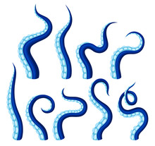 Blue Tentacles Of An Octopus. Vector Illustration On White Background.