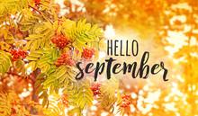 Hello September - Text On Defo...