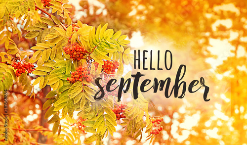 Montage in der Fensternische Melone Hello September - text on defocused abstract nature background. Red rowan berries on autumn tree. shallow depth, soft selective focus