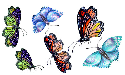Set of watercolor illustrations depicting bright butterflies hand-painted.
