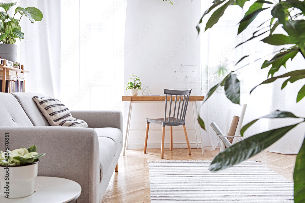 Fotografía  Modern scandinavian living room with design furniture, grey sofa, plants, bamboo bookstand and wooden desk