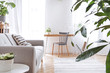 Leinwandbild Motiv Modern scandinavian living room with design furniture, grey sofa, plants, bamboo bookstand and wooden desk. Brown wooden parquet. Nice apartment. Stylish decor. Bright and sunny side of home space.