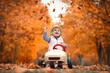 canvas print picture - im Tretauto in den Herbst