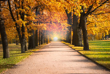 Gloden Autumn Season With Beautiful Romantic Alley In A Park With Colorful Trees And Sunlight. Autumn Natural Background
