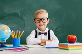 Fototapeta Panels - funny child   schoolboy  boy student about school blackboard