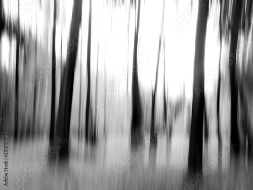 Montage in der Fensternische Dunkelgrau abstract motion blur of tree in a forest black and white style