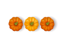 Realistic Pumpkins Isolated On...