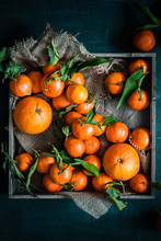 Oranges And Tangerines Into A Tray