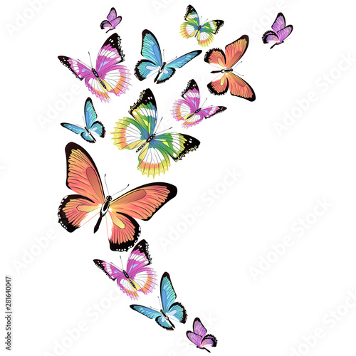 Tuinposter Vlinders butterfly189