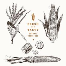 Corn On The Cob Vintage Design Set