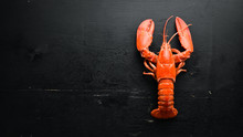 Boiled Lobster On Black Backgr...