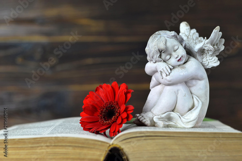 Poster Pays d Asie Little guardian angel sleeping on the book