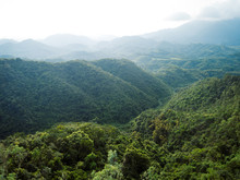 Aerial View Of Mountains With Green Dense Tropical Rainforests And Morning Fog