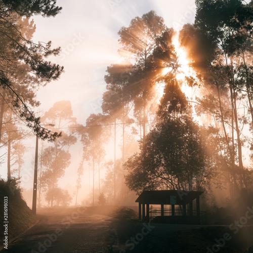 Manhã com nevoeiro na montanha Tablou Canvas