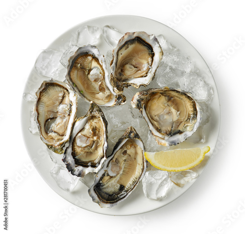 Fototapeta plate of fresh oysters on white background