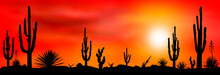 Mexican Desert Sunset Cacti. S...