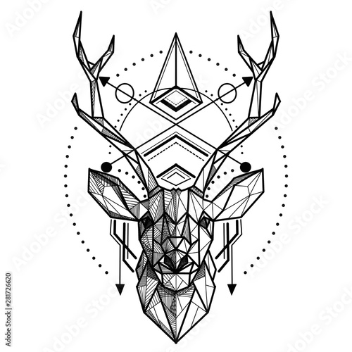 Photo Deer low poly ,Vector